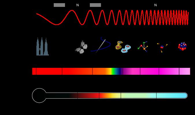 IB Physics Notes - 4.4 Wave characteristics